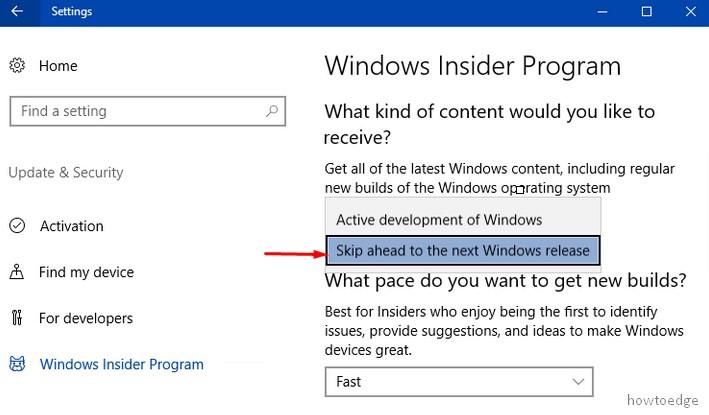 Windows 10 Build 20H1
