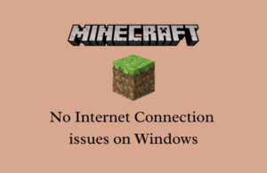 Fix Minecraft No Internet Connection issues on Windows