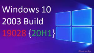Windows 10 Build 19028