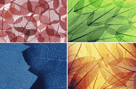Leafy Structures Windows 10 Theme