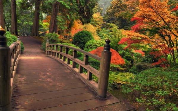 Bridges in Autumn