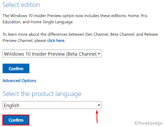 Windows 10 20H2 ISO - choose language