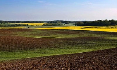 Latvian Landscapes