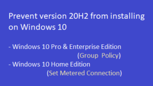 prevent version 20H2 from installing