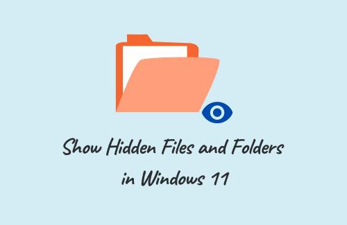 Show Hidden Files and Folders in Windows 11
