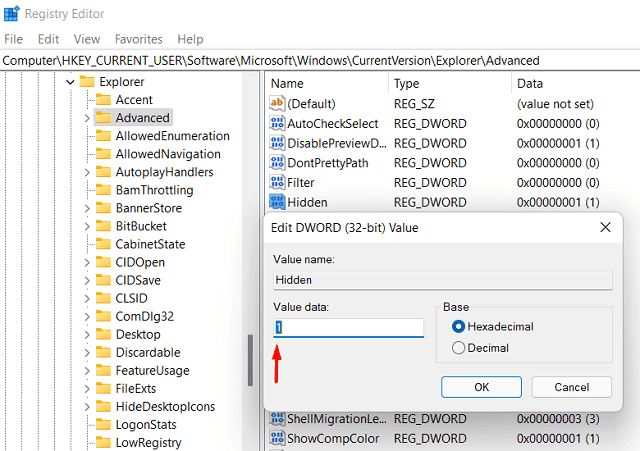 Show Hidden Files and Folders on Windows 11 - Tweak Registry