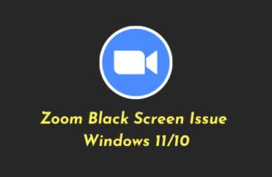 Fix Zoom Black Screen Issue Windows 11/10